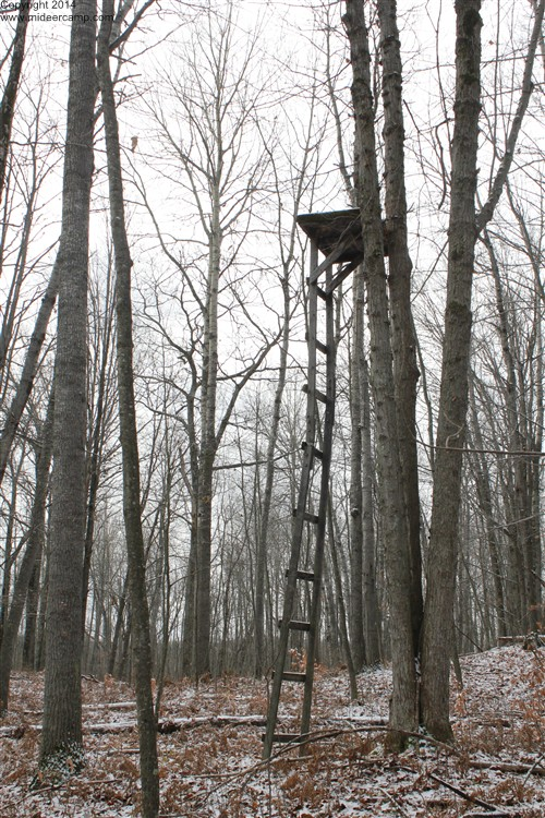 Deer Hunting Old Tree Stand