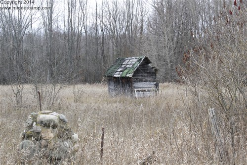 An Old Shed in a Field