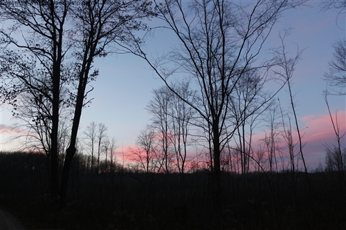 Sunset over Deer Camp pic 15